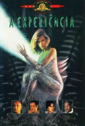 A Experiência - BluRay Filmes Torrent Download completo