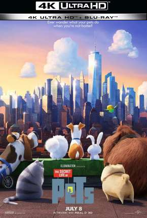 Pets - A Vida Secreta dos Bichos - 4K Filmes Torrent Download completo