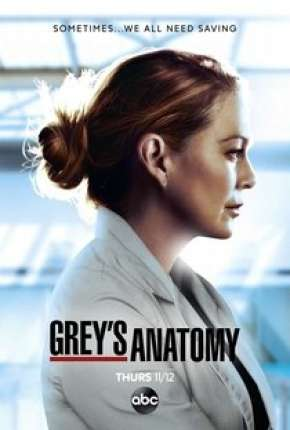 A Anatomia de Grey - 17ª Temporada Legendada Séries Torrent Download completo